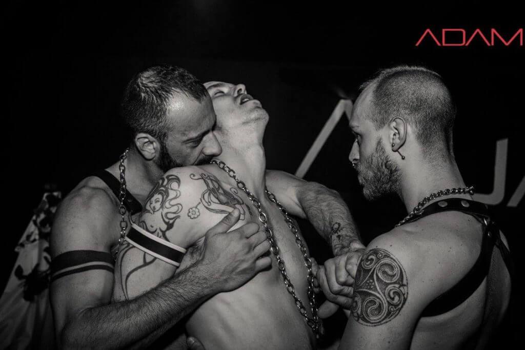 Home Pisa gay club